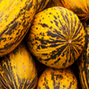 Jigsaw: Yellow Melons
