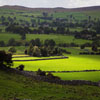 Jigsaw: Yorkshire Countryside
