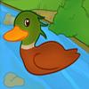 Joice Duck