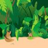 Jungle Junky