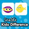 Kido Difference – Sea Life