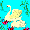 Kid's coloring: Two Swans