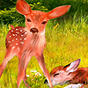 Little deers in the farm puzzle