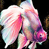 Little pinky fish slide puzzle