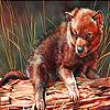 Little wolf cub slide puzzle