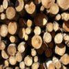 Logs Slider