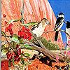 Lovely birds slide puzzle
