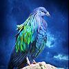 Lovely blue bird slide puzzle
