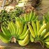 Jigsaw: Banana Bunch
