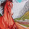 Mountain  wild horse puzzle