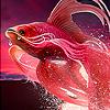 Nice fantastic fish coloring