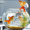 Nice hungry fishes slide puzzle