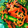 Orange spotted frog puzzle