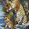 Panthers on the river  puzzle