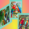 Parrot family in forest puzzle