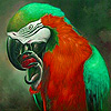 Parrot  in tropical island puzzle