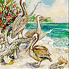 Pelicans on the island slide puzzle