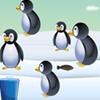Penguin Turnout