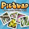Pic Swap