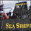 Picture Changing Jigsaw - SeaShepherd.org