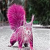 Pink field squirrel slide puzzle
