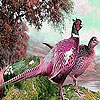 Pink forest birds slide puzzle