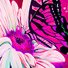 Pink garden and butterflies puzzle