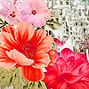 Pink garden flowers puzzle