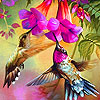 Pink hummingbirds puzzle