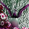 Pink sea bird puzzle