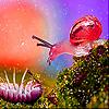 Pink Snail in garden slide puzzle