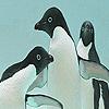 Player penguins puzzle