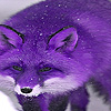 Purple mountain fox puzzle