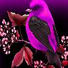 Purple sparrow in garden puzzle