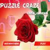 Puzzle Craze – Rose Garden