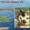Puzzle Mania v2 – Tyson & Anton