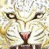 Puzzle Wild Life Leopard