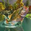 Puzzles :  Big fish