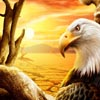 Puzzles Eagles