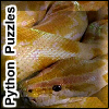 Python Puzzles