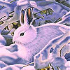 Rabbit in the snow slide puzzle