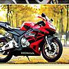 Racing Motorcycles Hidden Numbers
