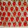 Red Beads Slider