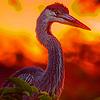 Red flying beaks geese puzzle