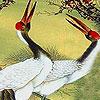 Red billed birds slide puzzle