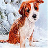 Red dog in the snow slide puzzle