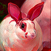Red ear rabbit slide puzzle