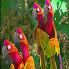 Red parrots on branch puzzle