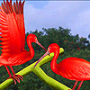 Red storks on the leaf puzzle