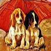Red umbrella dogs slide puzzle